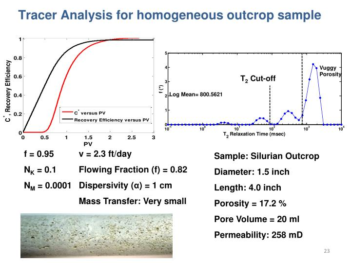 Tracer Analysis for homogeneous outcrop sample