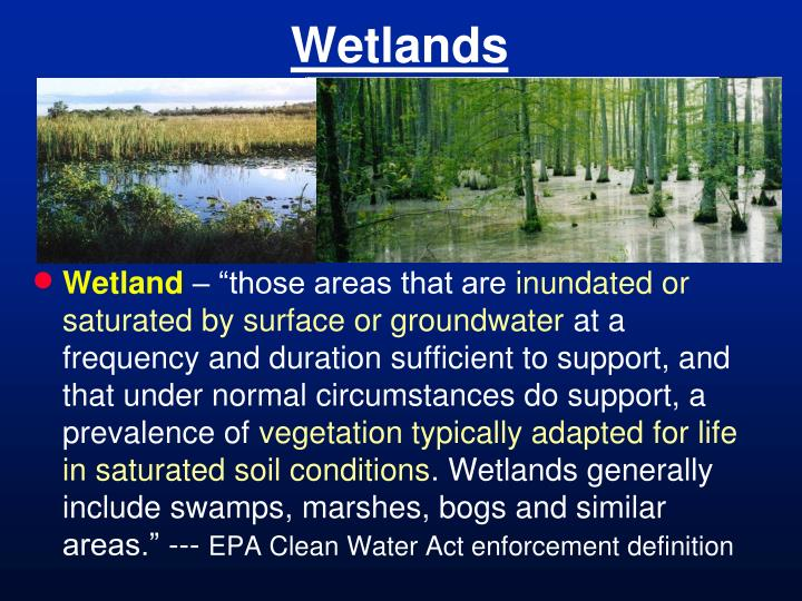 an definition and discussion of wetland Subpart c: discussion and fsa variances to the regional supplements to the corps manual (part iii) fsa wetland definition (3-1) for fsa purposes.