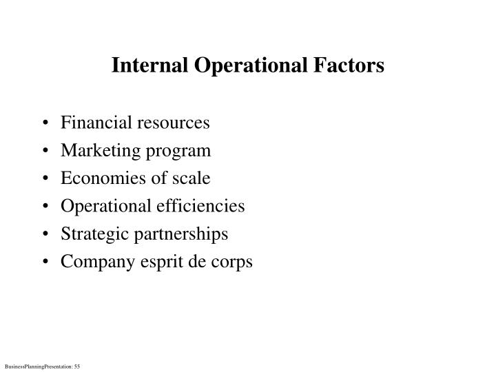 Internal Operational Factors