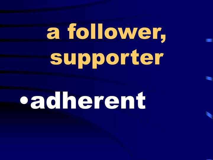 a follower, supporter
