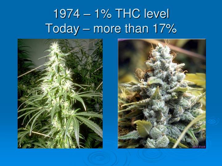 1974 – 1% THC level