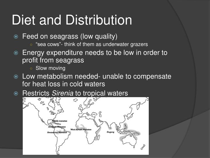 Diet and Distribution