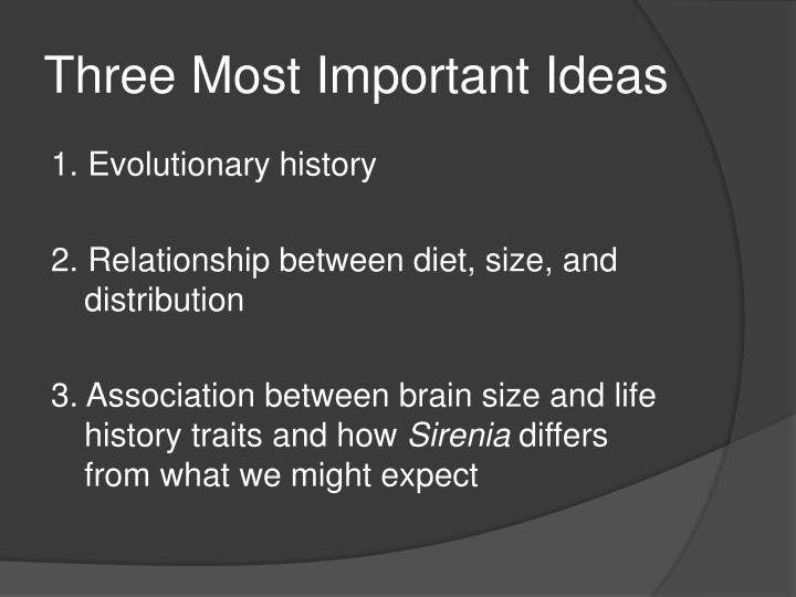 Three Most Important Ideas