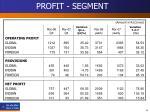 profit segment