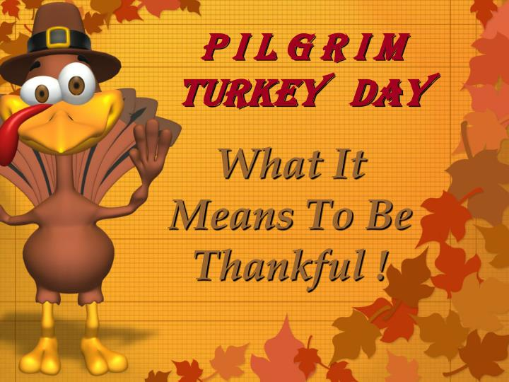 p i l g r i m turkey day n.