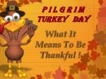 p i l g r i m turkey day