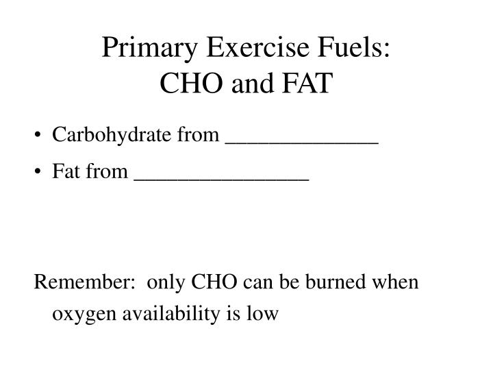 Primary Exercise Fuels: