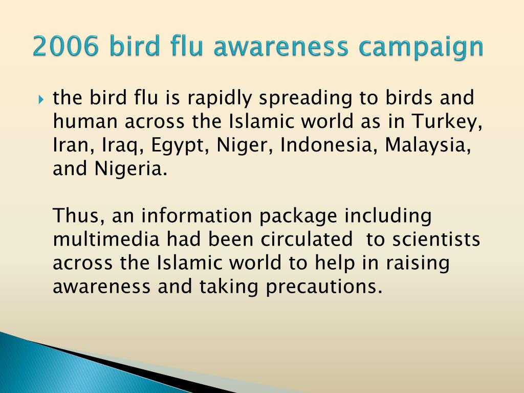 2006 bird flu awareness campaign
