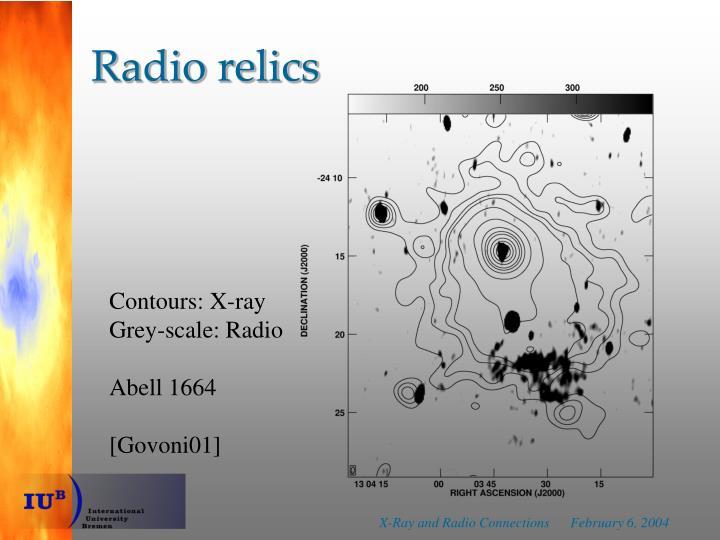 Radio relics