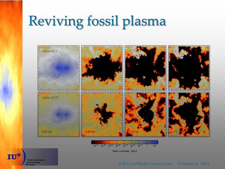 Reviving fossil plasma