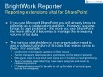 brightwork reporter reporting extensions vital for sharepoint
