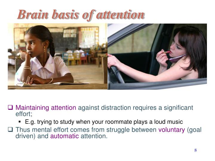 Brain basis of attention