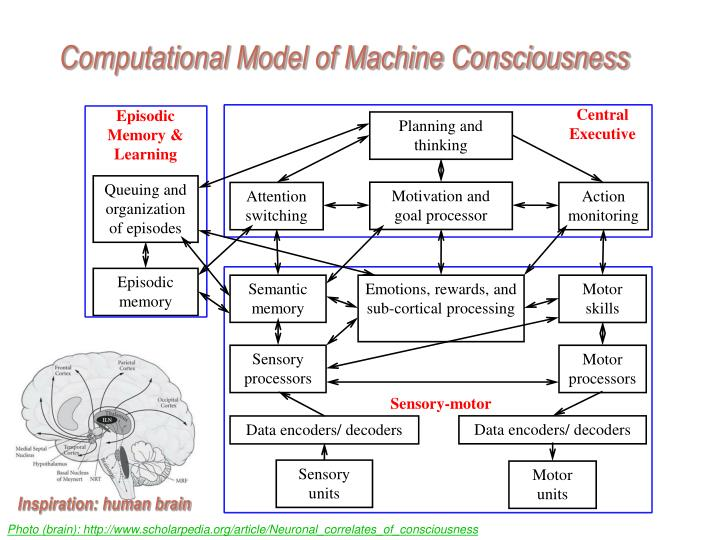 Computational Model of Machine Consciousness
