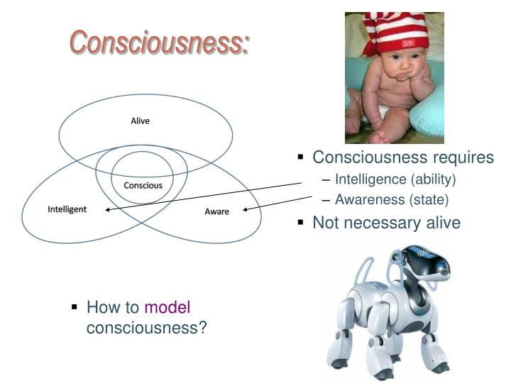 Consciousness requires
