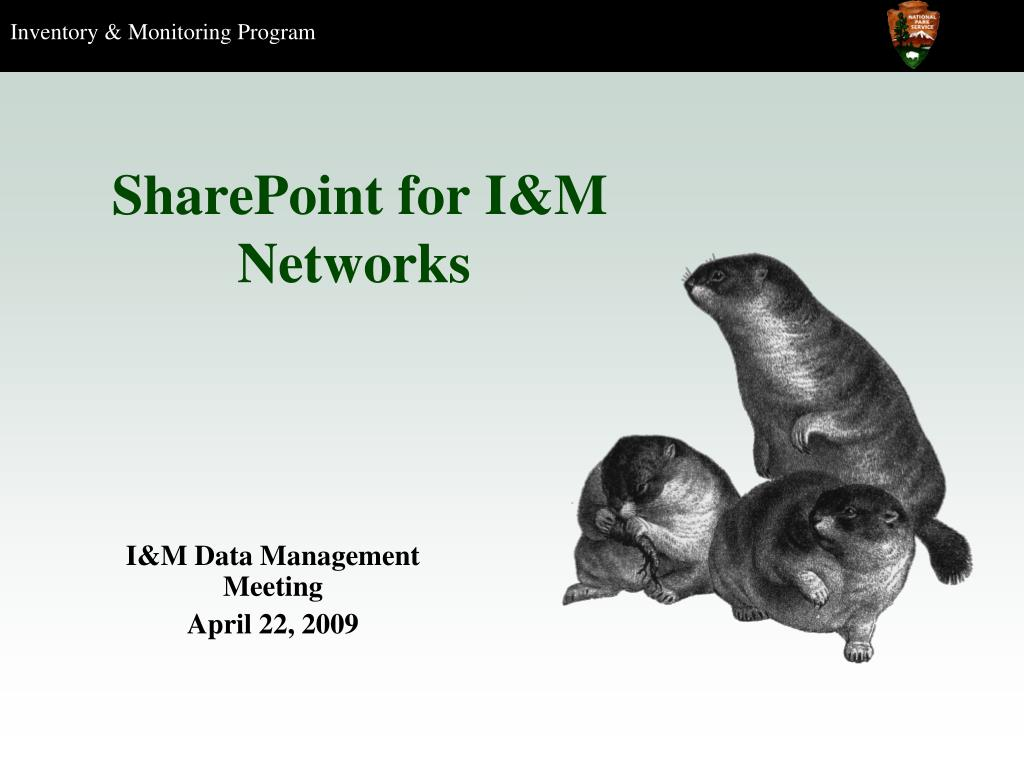 sharepoint for i m networks l.