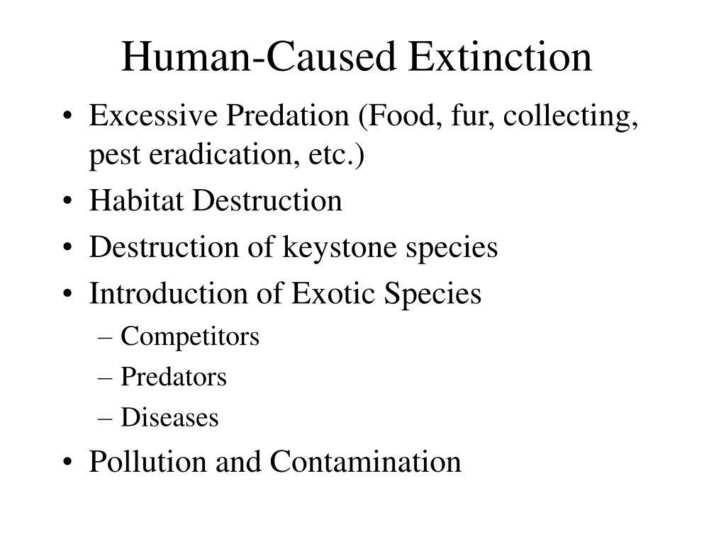 Human-Caused Extinction