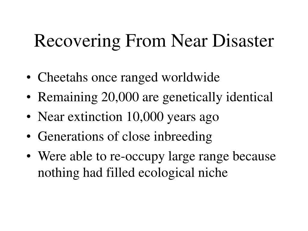 Recovering From Near Disaster