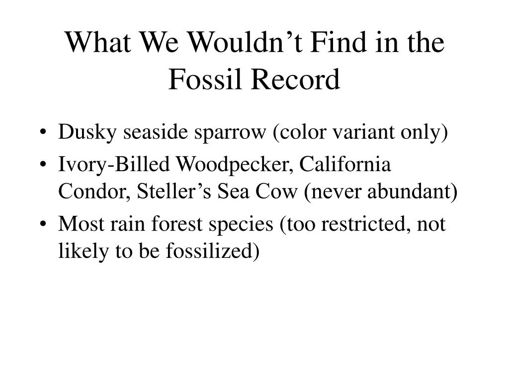 What We Wouldn't Find in the Fossil Record