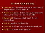 harmful algal blooms9