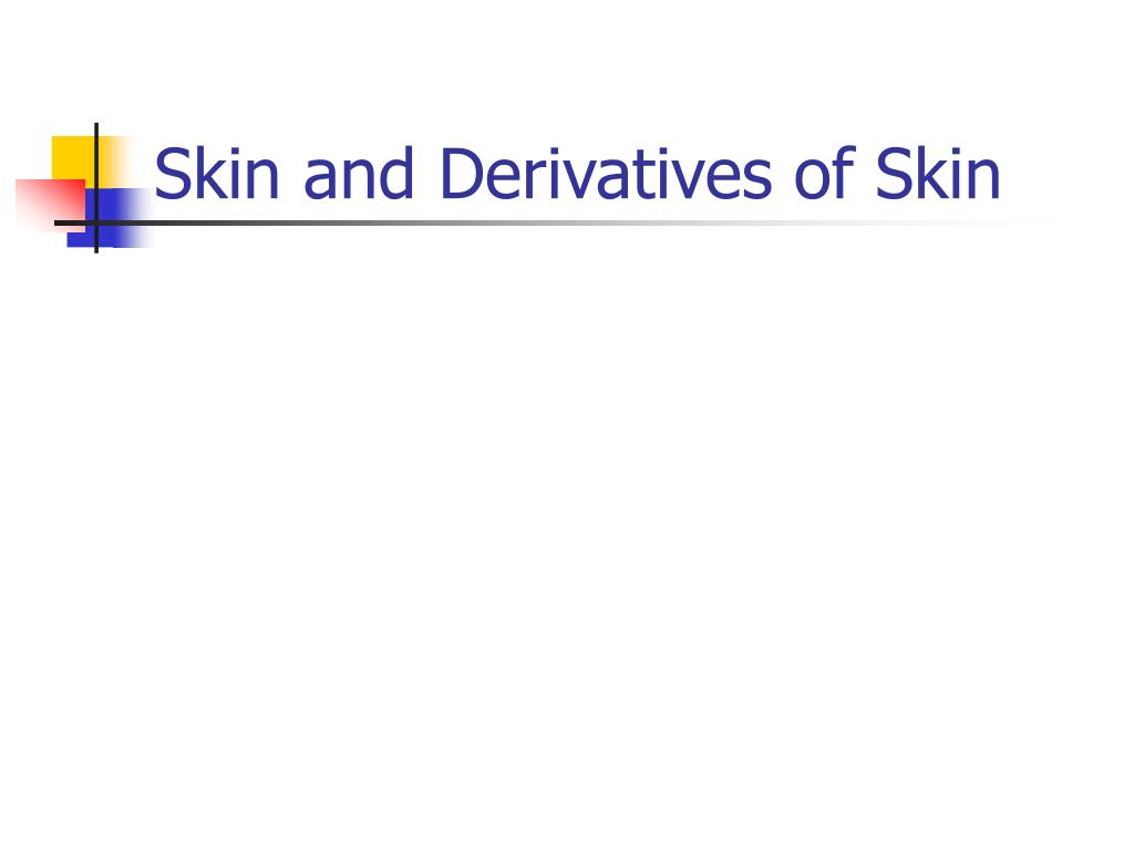 skin and derivatives of skin l.