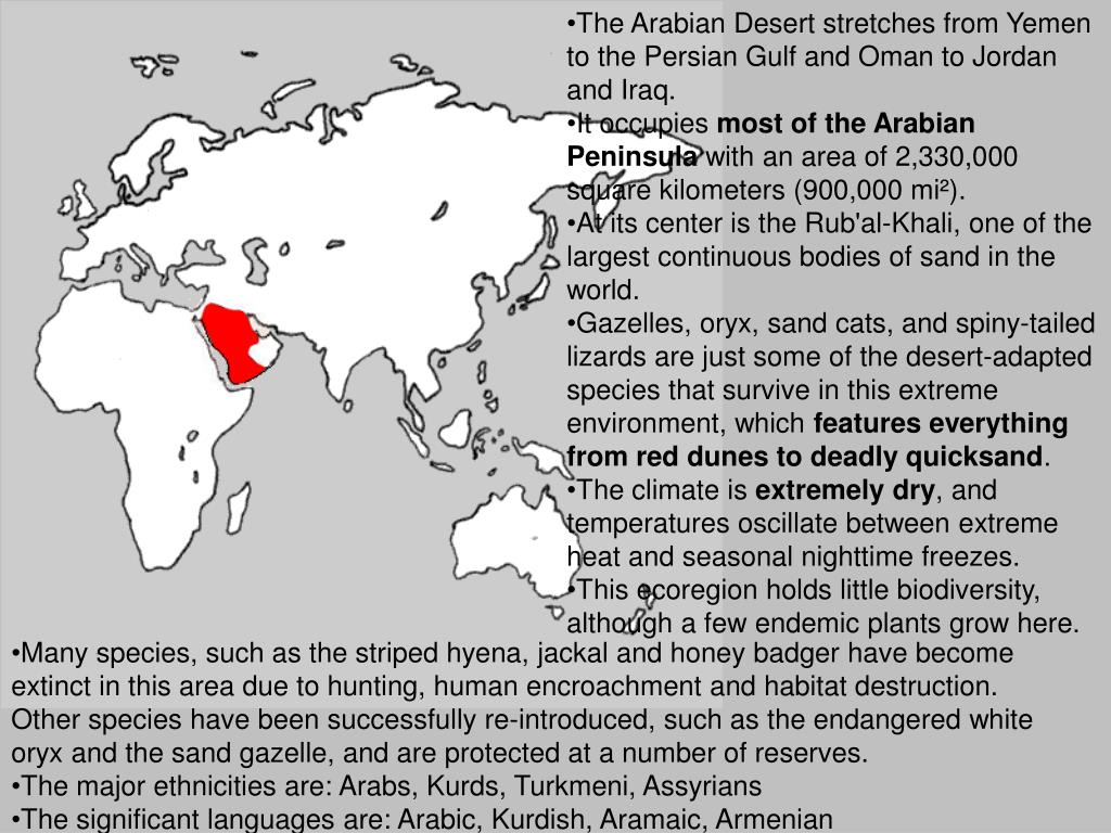 The Arabian Desert stretches from Yemen to the Persian Gulf and Oman to Jordan and Iraq.