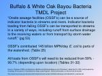 buffalo white oak bayou bacteria tmdl project
