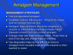 amalgam management1