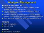 amalgam management2