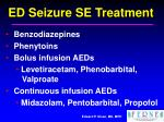 ed seizure se treatment