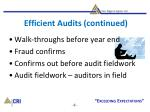 efficient audits continued