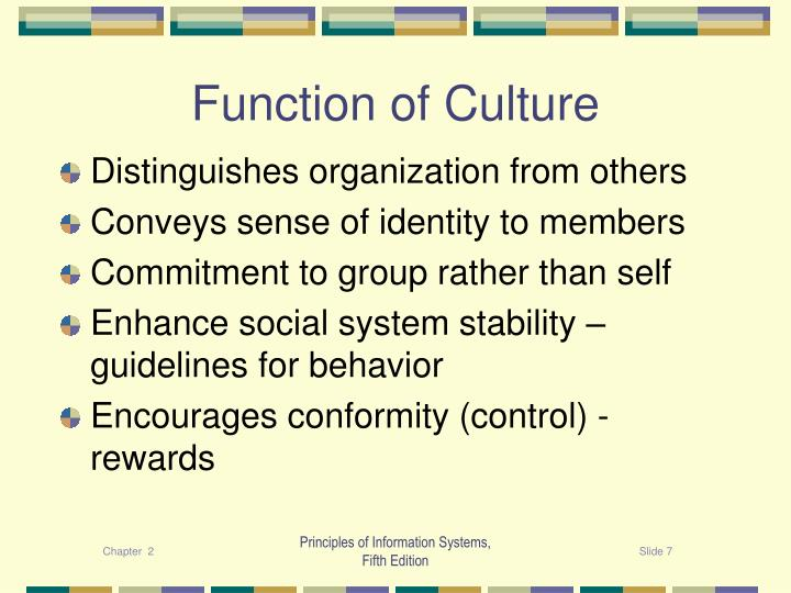 Function of Culture
