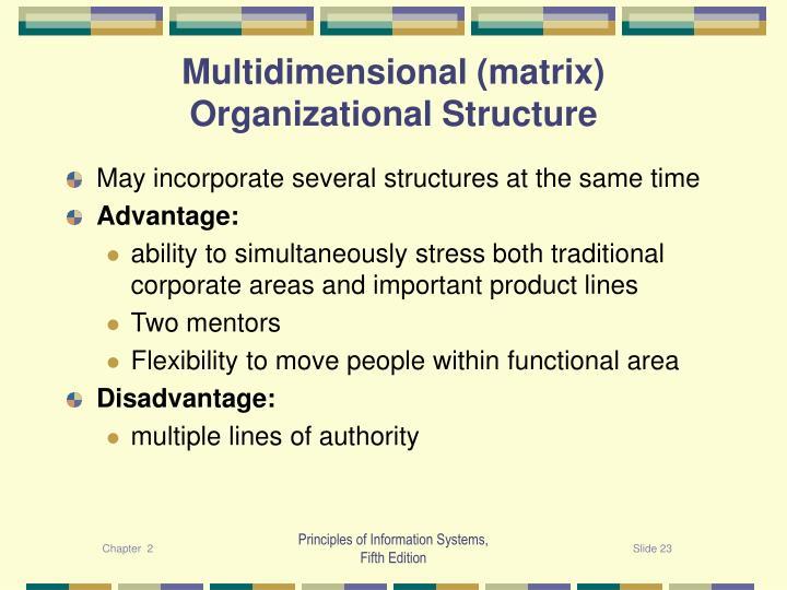 Multidimensional (matrix) Organizational Structure