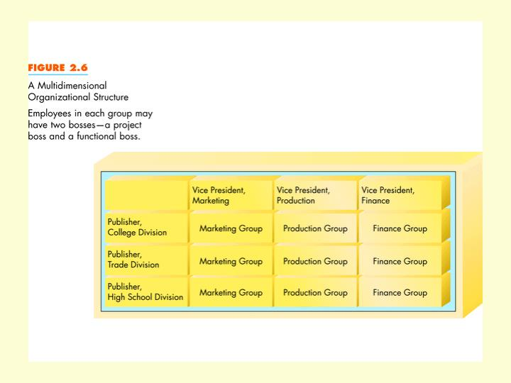 Multidimensional Organizational Structure