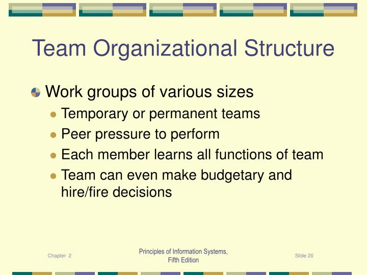 Team Organizational Structure