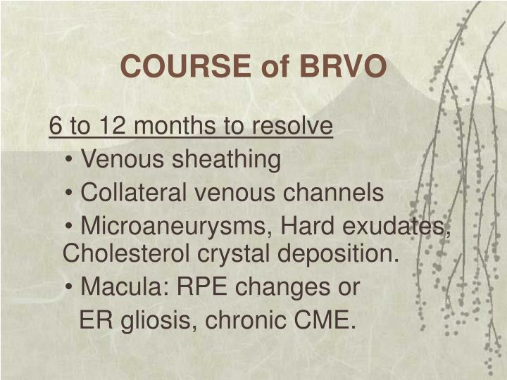 COURSE of BRVO