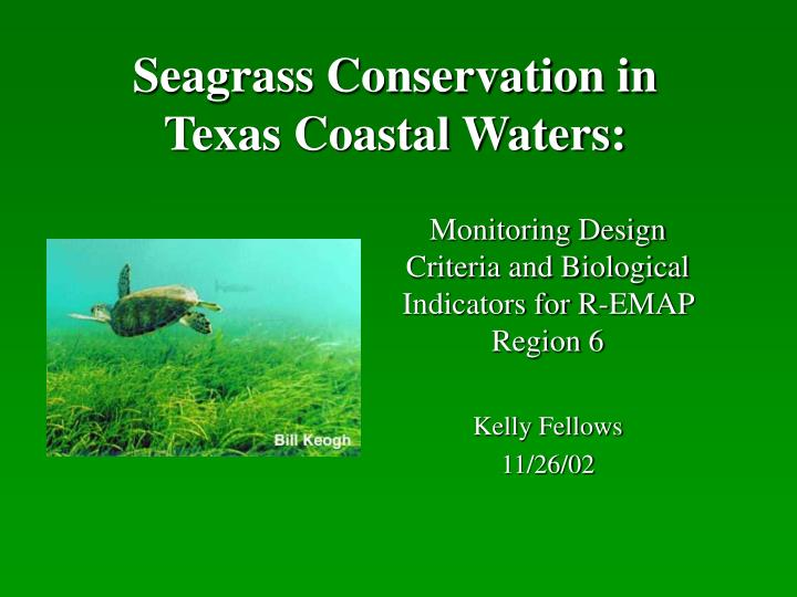 seagrass conservation in texas coastal waters n.