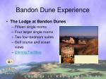 bandon dune experience1