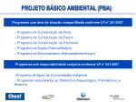 projeto b sico ambiental pba