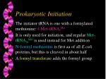 prokaryotic initiation