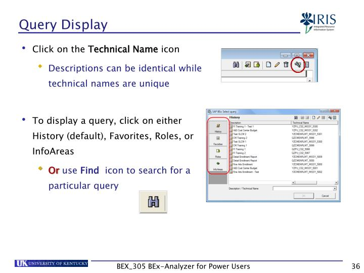 Query Display