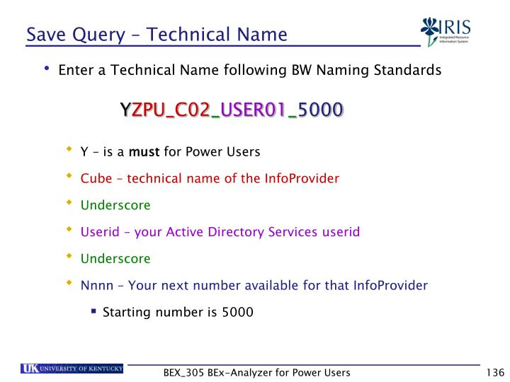 Save Query – Technical Name