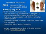 professional development1