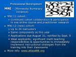 professional development3