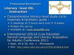 professional development6