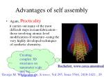 advantages of self assembly1