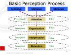 basic perception process1