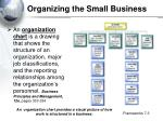 organizing the small business1
