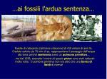 ai fossili l ardua sentenza