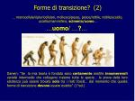 forme di transizione 2