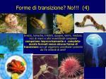 forme di transizione no 4